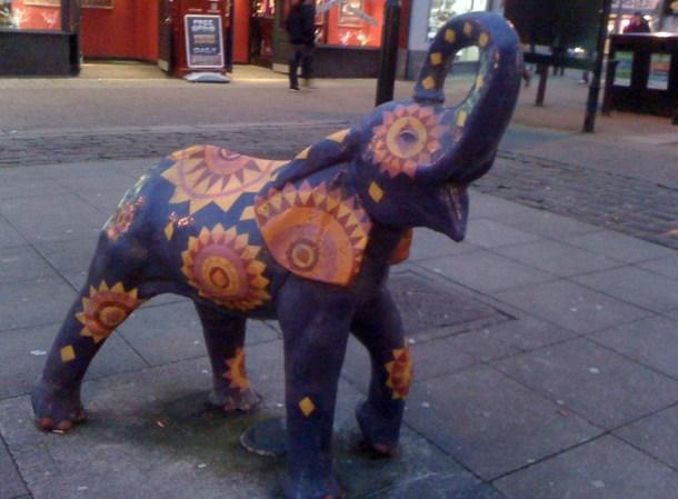 elephant 002