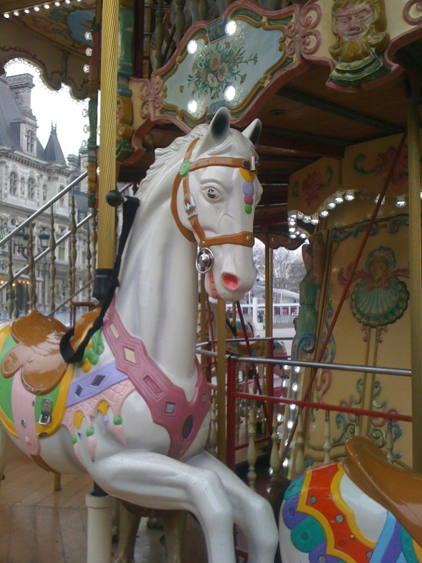 paris  Jan 2013 046